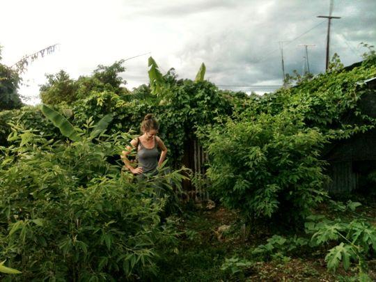 garden-veron-dr